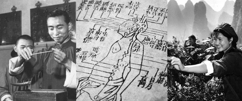 V.I.P Jiu 8 - The Restorative Baijiu