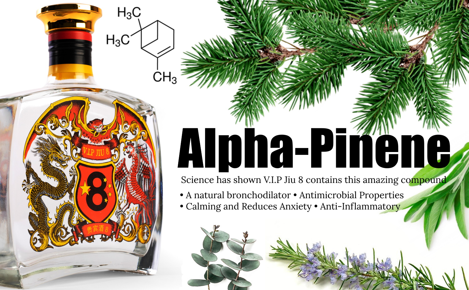 Baijiu Health Benefits? V.I.P Jiu 8 And Alpha-Pinene - Terpene