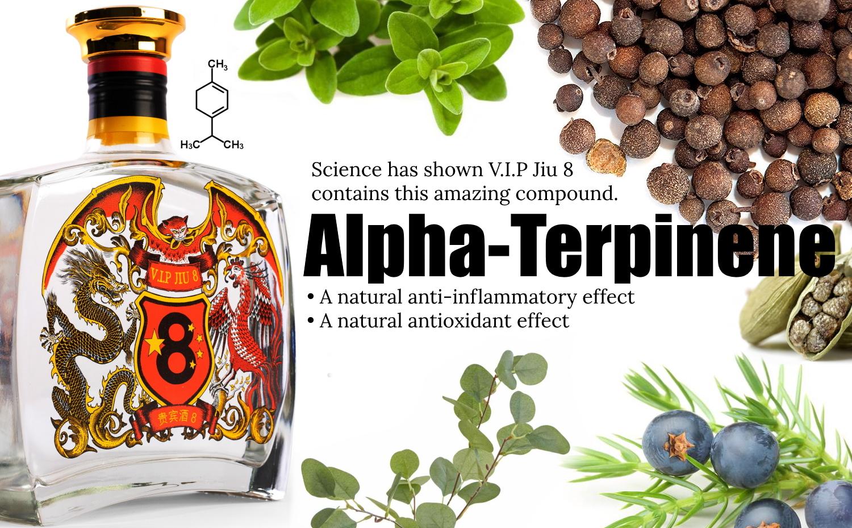 Baijiu Health Benefits? V.I.P Jiu 8 And Alpha-Terpinene