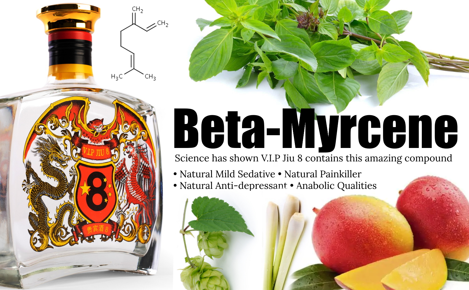 Baijiu Health Benefits? V.I.P Jiu 8 And Beta-Myrcene – Terpene